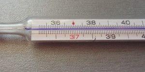 Нормальная ректальная температура у женщины